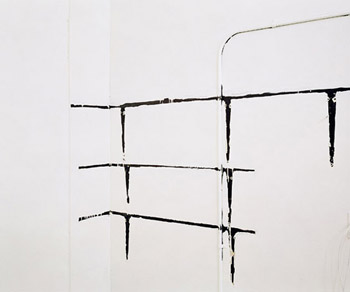 """Mark Wyse, Marks of Indifference #1 (Shelf), 2006 (from """"Marks of Indifference"""")."""