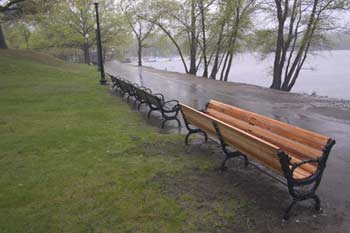 Matthew Hincman, Jamaica Pond Bench, 2006.