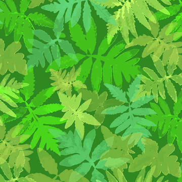 One of the artists participating in the First Annual Open Studios in North Adams: Martha Flood's Ferns can be seen at the Beaver Mill