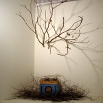Jessica Rylan, Nature Diorama from the Berwick AIR Retrospective at The Mills Gallery.