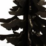 Close up view of Gothic Fir by Donald Morgan.