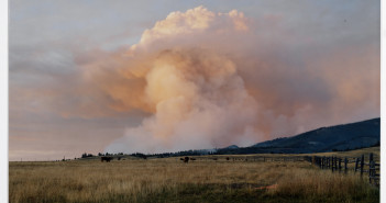 Laura McPhee, Smoke from a Wildfire Ignited by Sparks from a Burn Barrel, Champion Creek, Custer County, Idaho, 2005. Gift of the artist and Carroll and Sons (Boston, MA) in honor of Joe Deal.  © Laura McPhee.