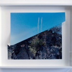 Valley of Fires Yucca Fold by Letha Wilson. Image courtesy of the artist