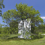 Wall in Blue Ash Tree by Letha Wilson. Image courtesy of the artist