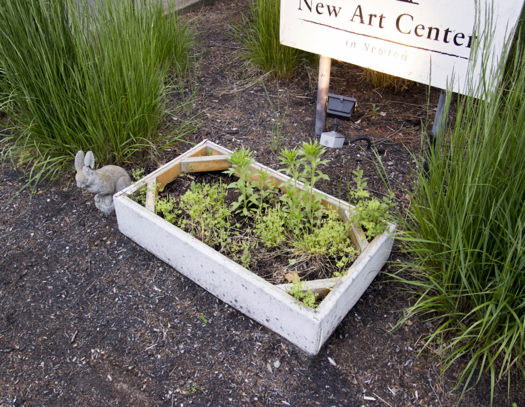 Planter. New Art Center, Newton, Massachusetts. 2013. Thomas Willis.
