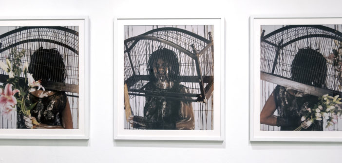 """Maria Magdalena Campos-Pons, """"Songs of Freedom,"""" C-Prints, 2013."""