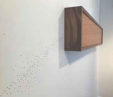 Andy Bablo, Feeble Cognition, 2017, African mahogany, black walnut and LED lighting, 12x58x5""